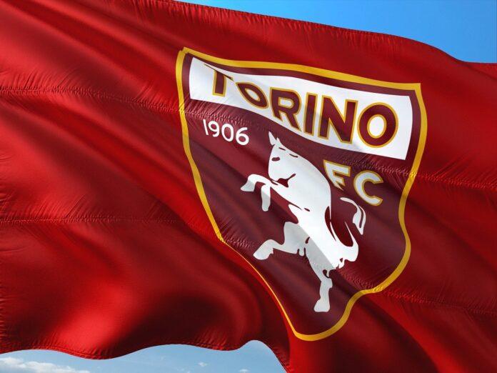 Bandiera TorinoFc